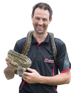 pest inspections on the north coast